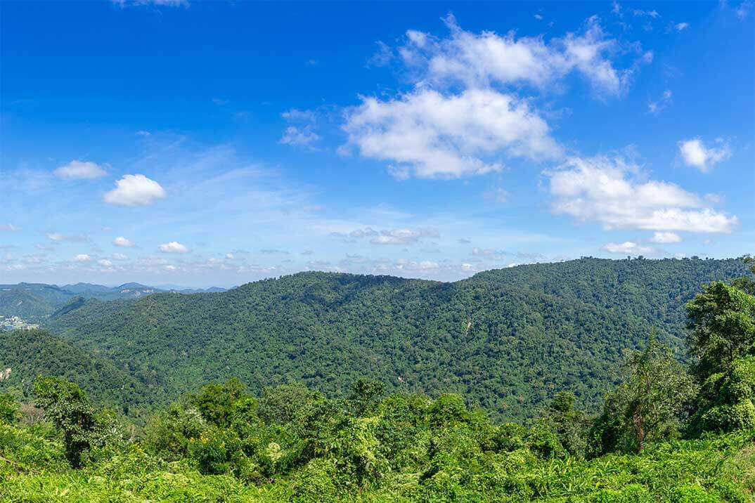 Why invest in Eastern Antioquia: 5 reasons you need to know